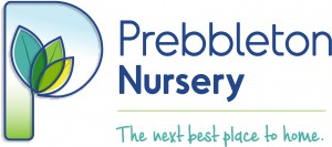 Logo for Prebbleton Nursery and Education Centre